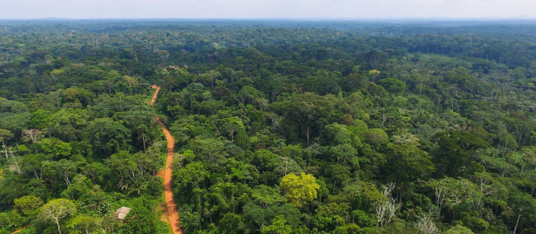 Environmental China